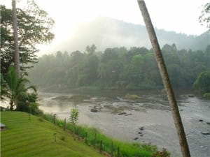Tailor made holidays: Explore Sri Lanka from Hikkaduwa and Galle
