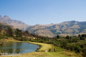 KwaZulu-Natal government 'keen to expand green practices'
